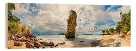 Holzbild  Traumstrand - Cathedral Cove Beach - Neuseeland - Michael Rucker