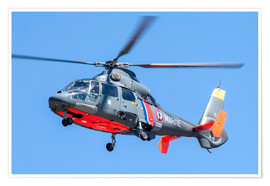Poster  French Navy AS365 Dauphin helicopter in flight over France. - Timm Ziegenthaler