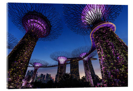 Acrylglas  Garden By The Bay - Singapur - Thomas Klinder