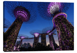 Leinwandbild  Garden By The Bay - Singapur - Thomas Klinder