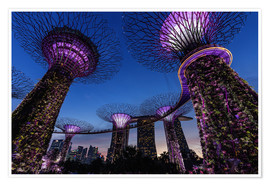 Thomas Klinder - Garden By The Bay - Singapur