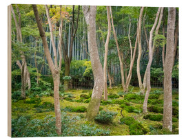 Holzbild  Gio-ji Tempel in Arashiyama, Japan - Jan Christopher Becke