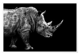 Premium-Poster Safari Profil Collection - Rhino Black Edition