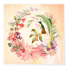 Poster  Hummingbird I - Mandy Reinmuth