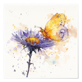 Premium-Poster  Schmetterling & Blume - Sillier Than Sally
