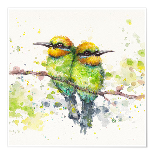 Póster Family (Rainbow Bee Eaters)