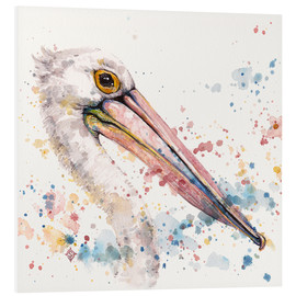 Forex  Pelicans About - Sillier Than Sally