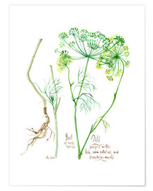 Premium-Poster  Dill - Verbrugge Watercolor