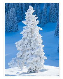 Premium-Poster Winter in den Alpen
