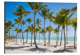Alubild  Juanillo Beach, Cap Cana, Punta Cana, Dominican Republic, West Indies, Caribbean, Central America - Jane Sweeney
