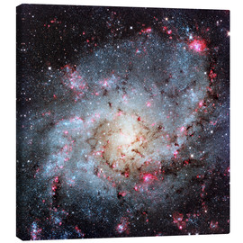 Leinwandbild  Triangulum Galaxy, optical image