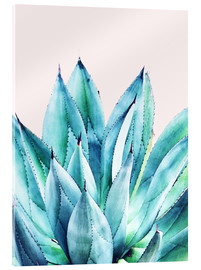 Acrylglasbild  Agave Watercolor - Uma 83 Oranges