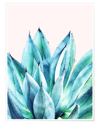 Premium-Poster Agave Watercolor