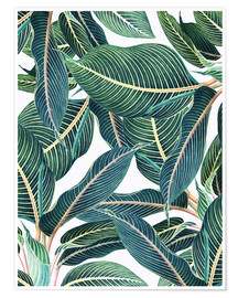 Premium-Poster Botanical Leaves