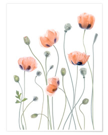 Premium-Poster  Poppy Poesie - Mandy Disher