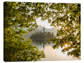 Mike Clegg Photography - Bled am Morgen, Slowenien