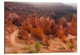 Alubild  Bryce Canyon National Park, Vereinigte Staaten, Thors Hammer - Catharina Lux