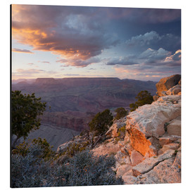 Alubild  Lipan Point, Grand Canyon National Park - Rainer Mirau