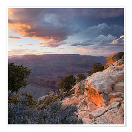 Premium-Poster Lipan Point, Grand Canyon National Park