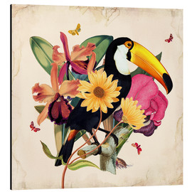 Alubild  Oh My Parrot XII - Mandy Reinmuth