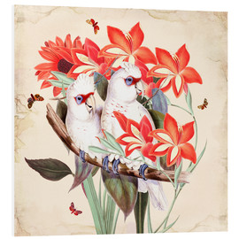 Forex  Oh My Parrot XI - Mandy Reinmuth