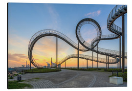 Alubild  Tiger and Turtle Duisburg - Michael Valjak