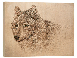 Holzbild  Grauwolf Studie - Ashley Verkamp