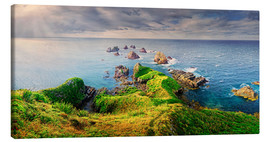 Leinwandbild  Neuseeland Nugget Point - Michael Rucker
