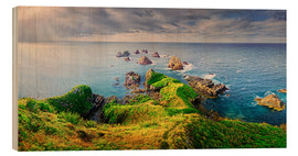 Holzbild  Neuseeland Nugget Point - Michael Rucker