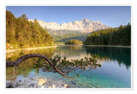 Poster Am Eibsee in Bayern