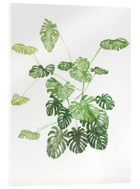 Acrylglasbild  Monstera - Jennifer McLennan
