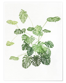 Premium-Poster  Monstera - Jennifer McLennan