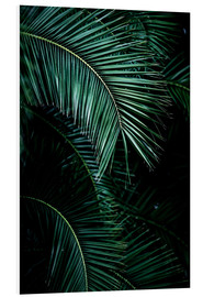 Forex  Palm Leaves 9  - Mareike Böhmer Photography
