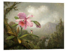 Forex  Orchidee und Kolibri - Martin Johnson Heade
