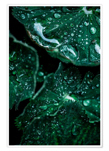 Premium-Poster Rainy Days 10