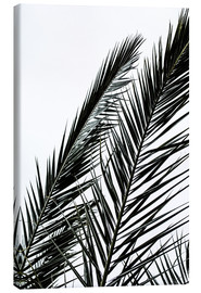 Leinwandbild  Palm Leaves - Mareike Böhmer