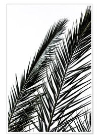 Poster  Palm Leaves - Mareike Böhmer Photography