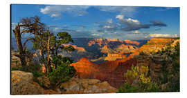 Alubild  Grand Canyon Idylle - Michael Rucker