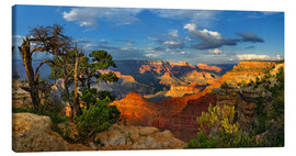 Leinwandbild  Grand Canyon Idylle - Michael Rucker