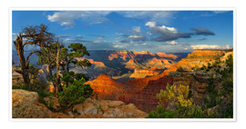 Premium-Poster  Grand Canyon Idylle - Michael Rucker