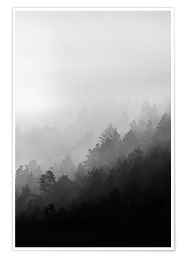 Premium-Poster Misty Mornings