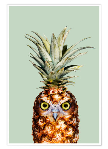 Poster ANANAS EULE