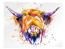 Acrylglas  Scottish Highland Cow - Zaira Dzhaubaeva