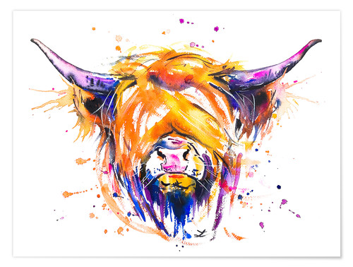 Premium-Poster Scottish Highland Cow
