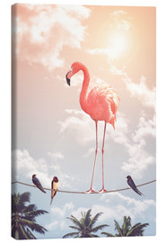 Leinwandbild  FLAMINGO & FRIENDS - Jonas Loose