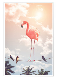 Premium-Poster Flamingo & friends