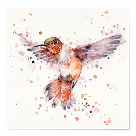 Poster  Rufous The Hummingbird - Sillier Than Sally