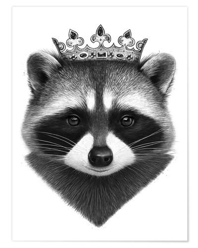 Premium-Poster King raccoon