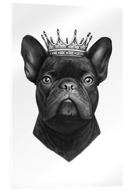 Acrylglasbild  The French Bulldog king - Valeriya Korenkova