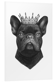 Hartschaumbild  The French Bulldog king - Valeriya Korenkova